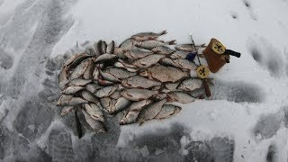 Рыбалка на белоярке ноябрь 2019