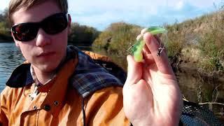 Рыбалка по реке великой ненецкого округа