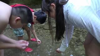 川遊びの穴場!千葉県は養老渓谷に行ってきました!