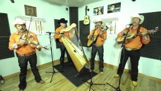 Conjunto De Arpa Grande (Aunque Me Tires Las Garas) Jilgueros Michoacános 2013