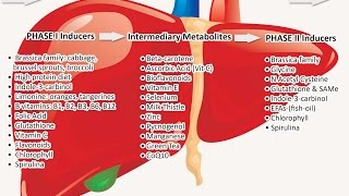 MAXIMized Health Habit: Detoxification