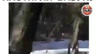 Чеченцы настигли Руки Базуки,они нашли его скоро полностью видео будет,Асхаб Тамаев & Кирил Терешин