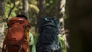 【信越】ブナの森が美しいロングトレイル 信越トレイルを行く