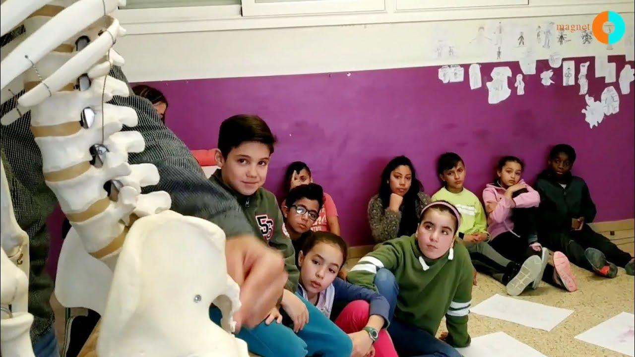 Projecte Magnet: Escola Sant Ignasi i la Fundació Althaia