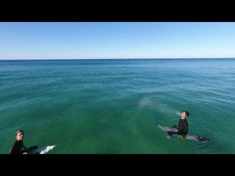 Bungan Beach Surf