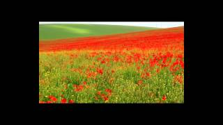 Elenya: I Vow To Thee My Country, 100 Years WW1 Tribute
