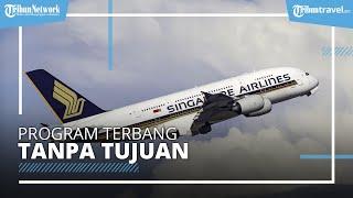 Ikuti Tren Maskapai Lain, Singapore Airlines Berencana Buka Penerbangan Tanpa Tujuan Selama 3 Jam