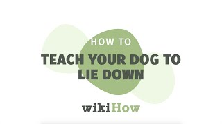 How to Teach Your Dog to Lie Down   wikiHow Asks a Professional Dog Trainer