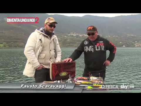 La caccia e la pesca in pesce grande di video