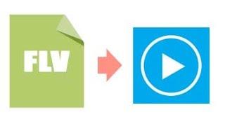 Reproducir Todos los Formatos con Windows Media Player (Incluido FLV)