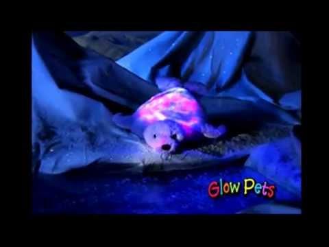 Animal pets - Magical stuffed animals that light up