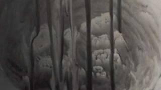 Derek-Animal Collective (REMIXED)