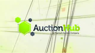 AuctionHub.com commercial