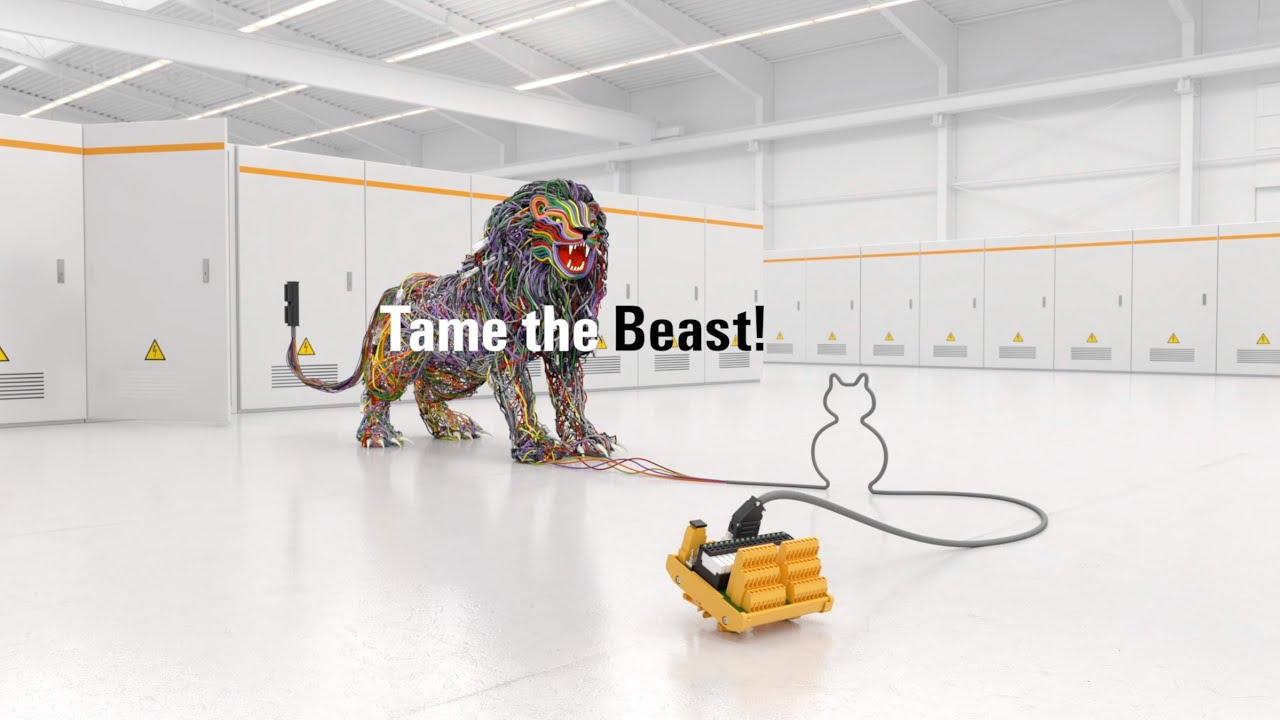 Tame the Beast!