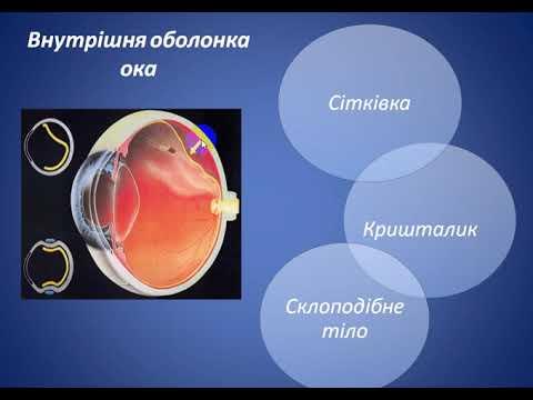 A vasutasok látásvizsgálati táblázata