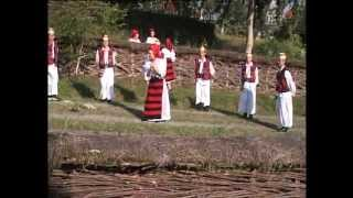 Nastacuta Iuga-Mandru Zice Cetera