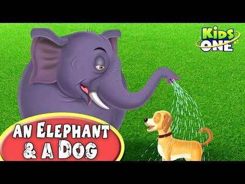 An Elephant and A Dog | Funny Short Story For Kids