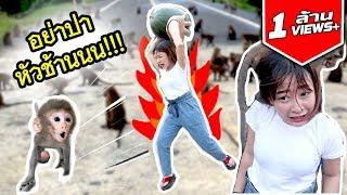 ซัน vs ฝูงลิง จะดุเดือดขนาดไหน ไปดู !!!