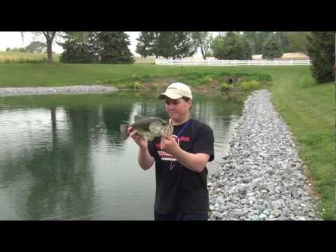 Pond Bass Fishing Pennsylvania 2012 #2