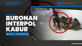 Wiki Trends - Rekaman CCTV WN Rusia Buronan Interpol Kabur dari Kantor Imigrasi Bali