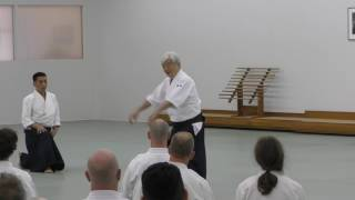 2017 Osensei Memorial Seminar Class 3 Y Yamada 1080P