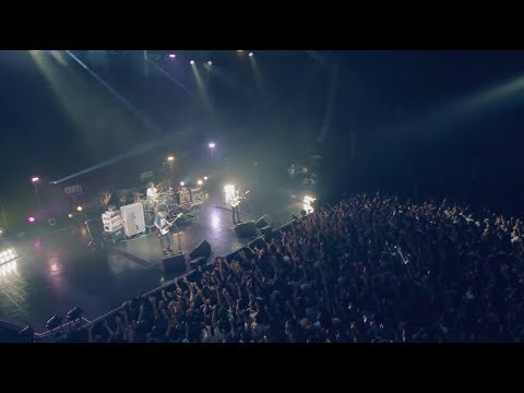 UNISON SQUARE GARDEN「シュガーソングとビターステップ」LIVE MUSIC VIDEO