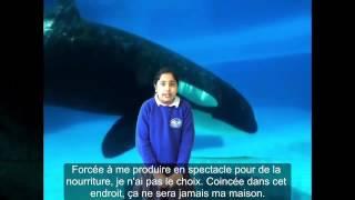 British children speak up against cetaceans captivity (VOSTFR)