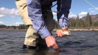 Big Sky Outdoors - Spring fly fishing