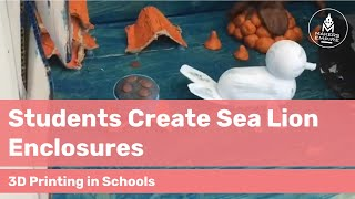 How Woodville Gardens PS Students Explored Designs for Sea-Lion Enclosures with 3D Printing