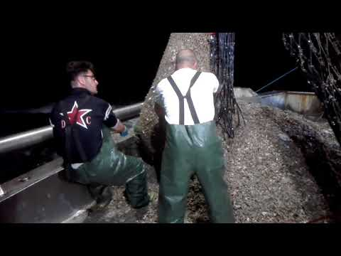 Comprare vypolzk per pescare in Yaroslavl