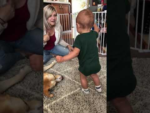Gabriel's First Steps