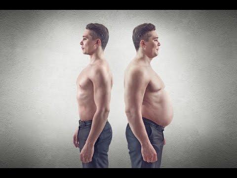 Протеин матрикс при похудении
