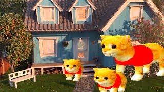 ПРИКЛЮЧЕНИЕ МАЛЕНЬКОГО КОТЕНКА мультфильм про котят мультик для детей и малышей #УШАСТИК КИДС