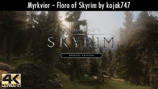 Skyrim SE MODS - Myrkvior Flora Of Skyrim   Ultra Modded realistic Next Gen Graphics [4K]