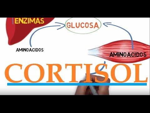 Cómo mantener el nivel de azúcar en la sangre