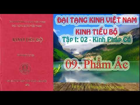 Kinh Tiểu Bộ - 020. Kinh Pháp Cú - 09. Phẩm Ác