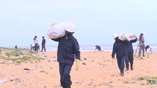 Cần điều tra, xác minh nguyên nhân dẫn đến dầu vón cục và rác thải tràn vào bờ biển Quảng Nam