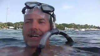 160313 A Swim At Key Largo