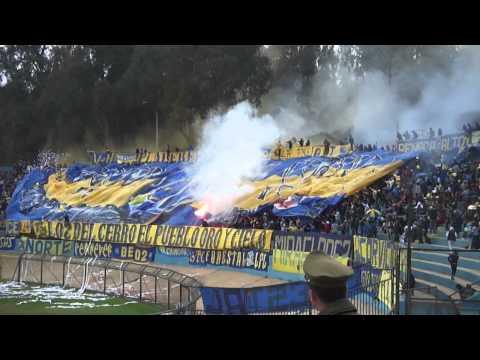 """""""LOS DEL CERRO / EVERTON Nunca te voy a dejar"""" Barra: Los del Cerro • Club: Everton de Viña del Mar • País: Chile"""