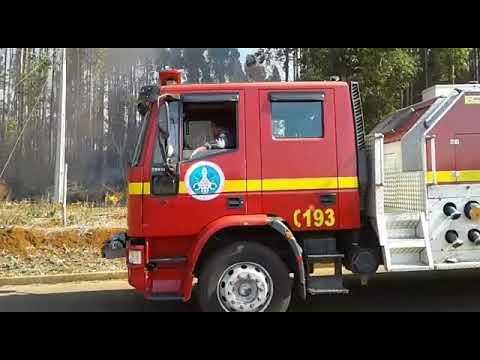 Vídeo: incêndio atinge plantio de eucaliptos nas Chacaras Caiçaras