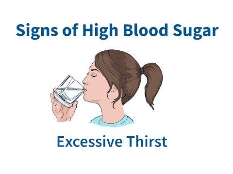Wie ist die Freisetzung Blut Insulin