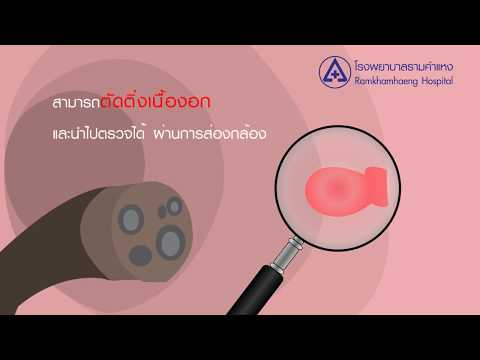 Chelyabinsk Phlebologist ยาทั้งหมด