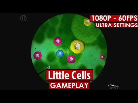 Little Cells
