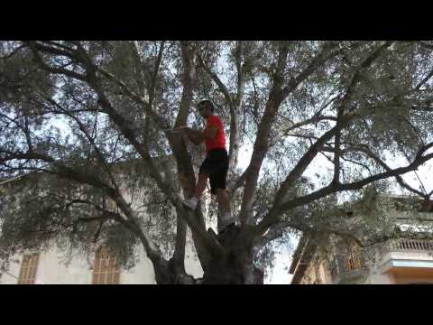 Nº 3 Toni Ballester X CHALLENGE DE TARDO 2014 SANTA MARGALIDA MALLORCA