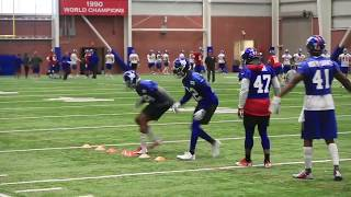 Giants defensive backs work during OTAs