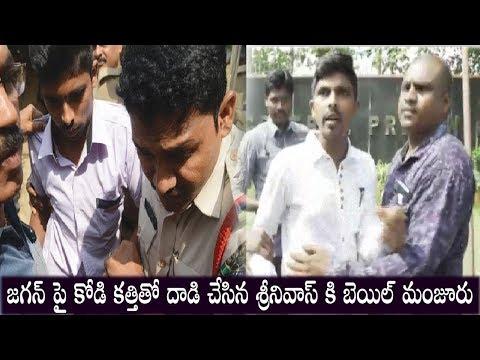 YS Jagan assault Case Accused Srinivasa Rao Release | Ys Jagan | Top Telugu Media