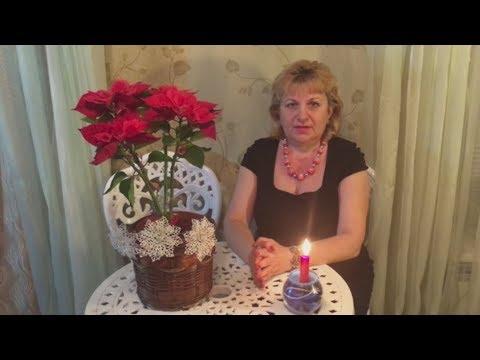 Назаренко в поисках счастья