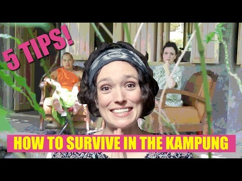 How to Survive in an Indonesian Village