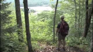 Maine Woods Initiative: Assuring Sustainable Forestry, Recreation and Fun ... Forever