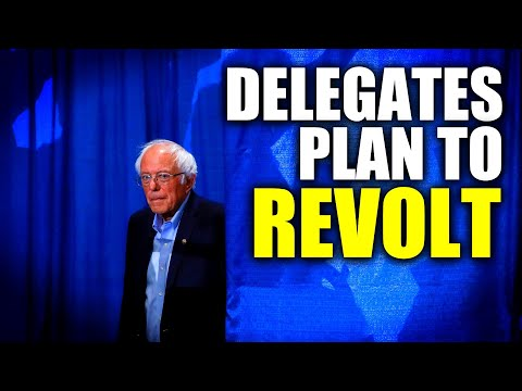 Bernie Delegates Stage Rebellion at DNC Convention Over Medicare For All